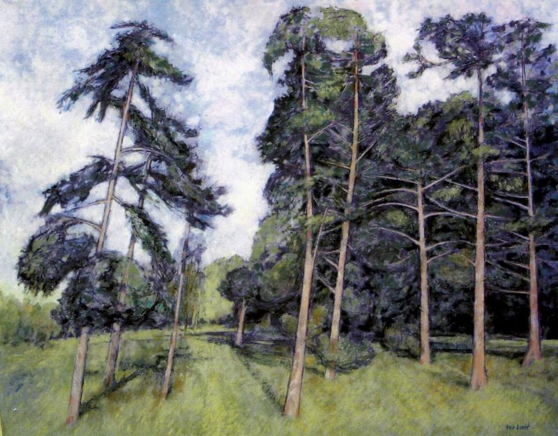 Trees, Nonsuch Park